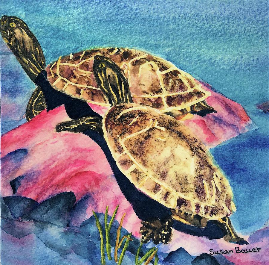 Turtles by Susan Bauer