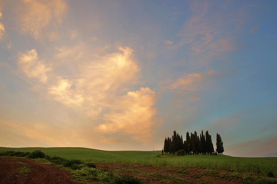 Tuscan dream  by Yuri San