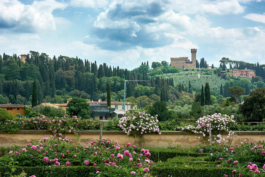 Tuscan landscape in Florence by Eduardo Jose Accorinti