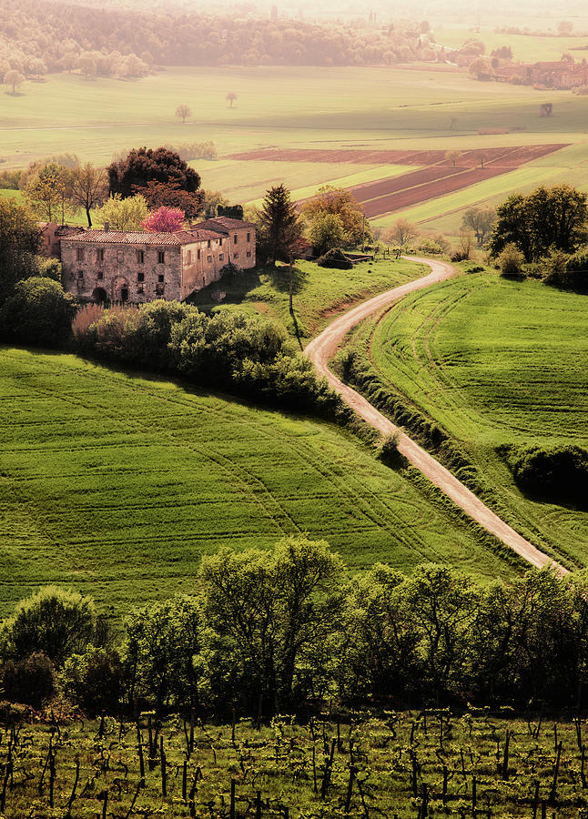 Tuscan Landscape Photograph by John And Tina Reid
