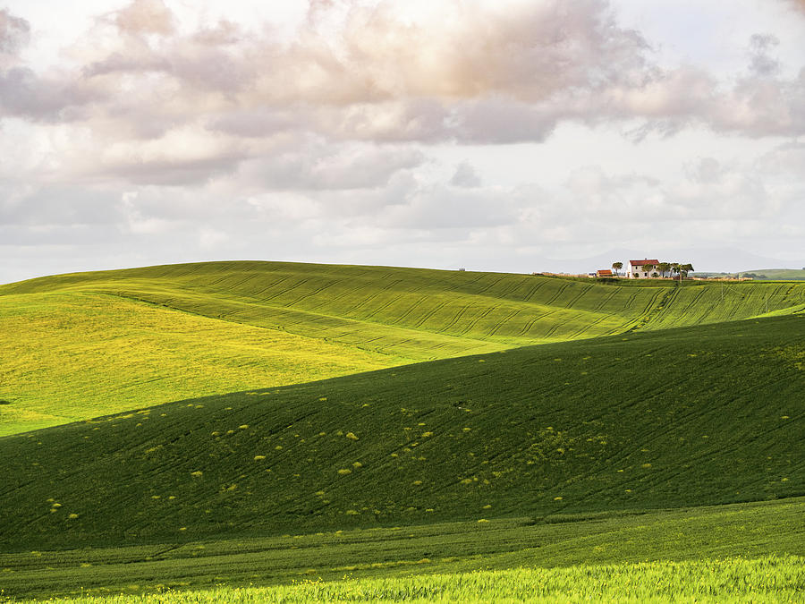Tuscan Landscapes. Hills in the spring by Giovanni Bertagna