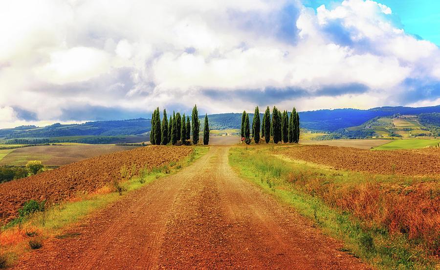 Tuscan Road by Lev Kaytsner