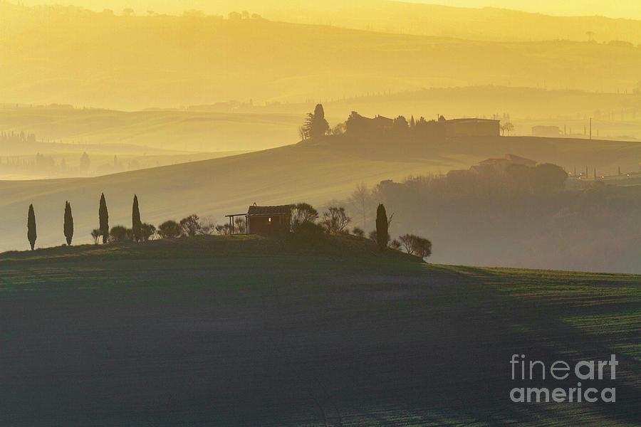 Tuscan Rolling Farmland by Heiko Koehrer-Wagner
