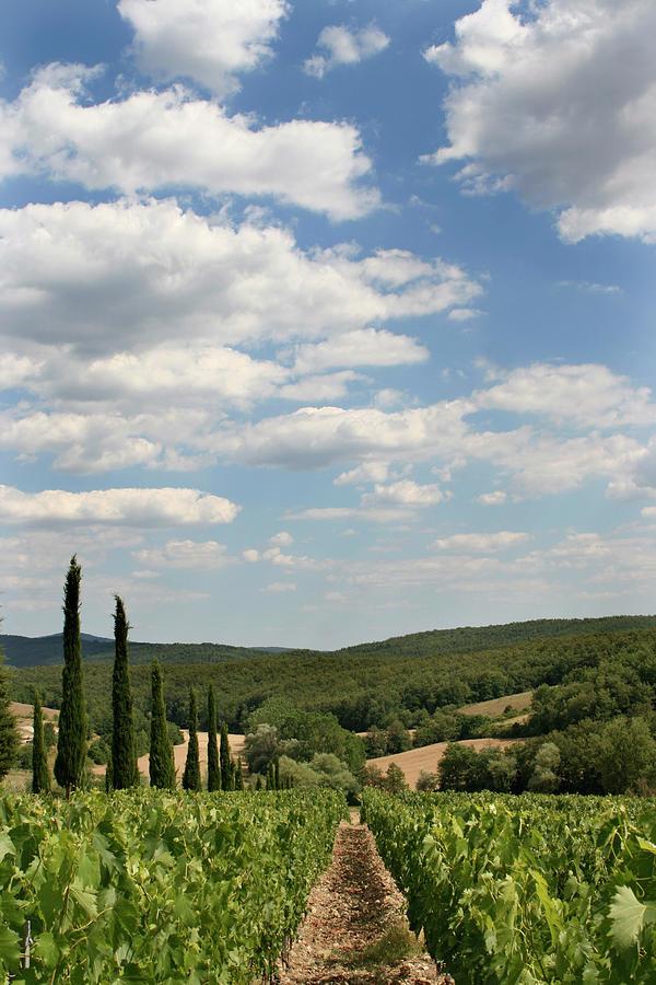 Tuscan Skyline 01 Photograph by Dean2