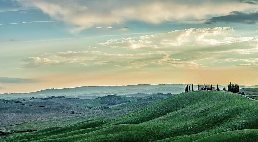 Tuscan Wheat Field by Fred Greco