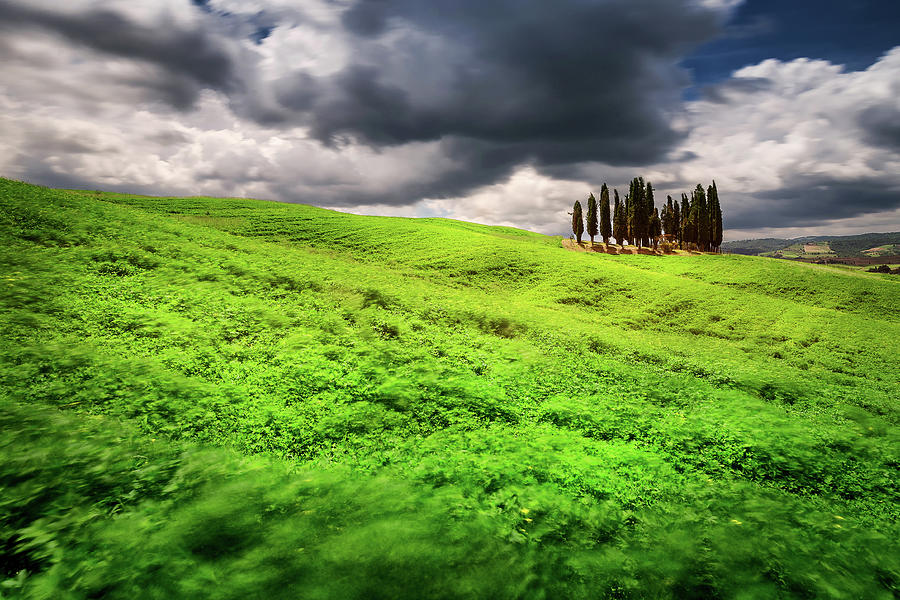 Cypress Trees Photograph - Tuscany dream by Andrei Dima