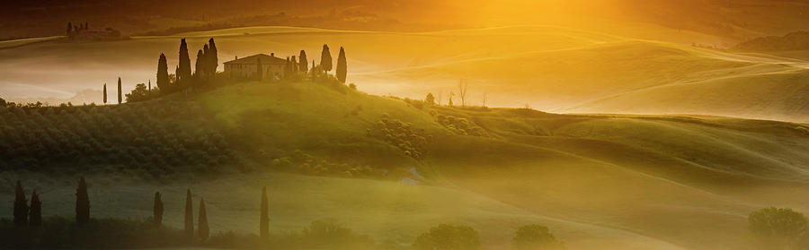 Tuscany In Gold by Evgeni Dinev
