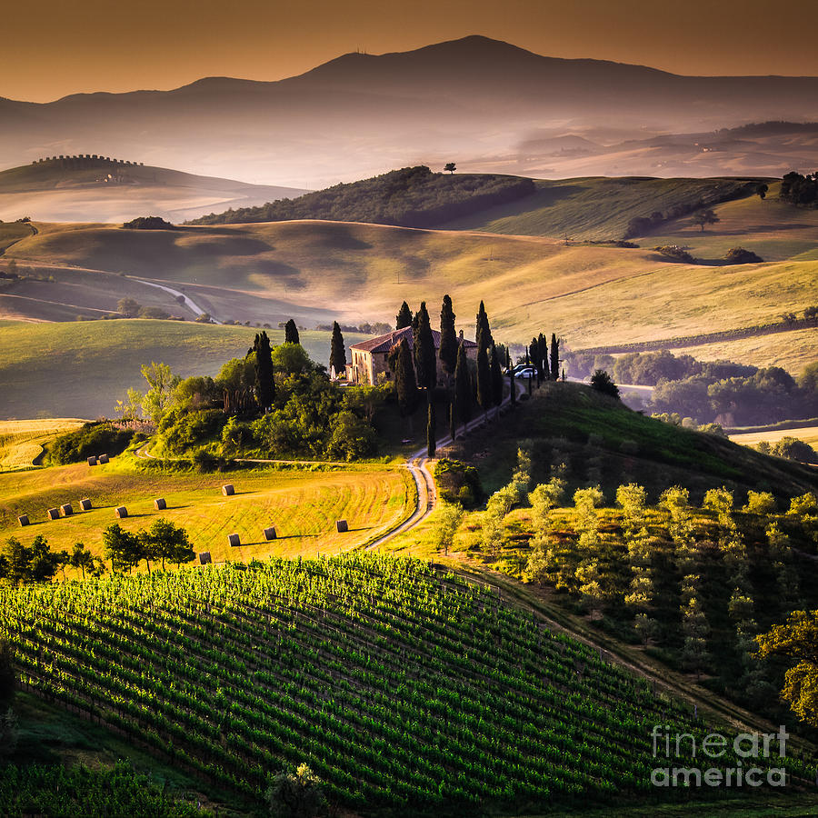 Country Photograph - Tuscany, Italy - Landscape by Ronnybas Frimages