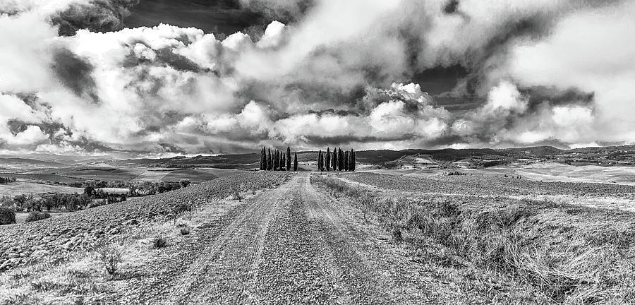 Tuscany Road by Lev Kaytsner