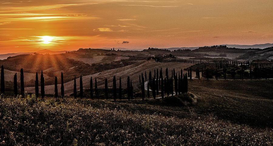 Tuscan Sunset by Fred Greco