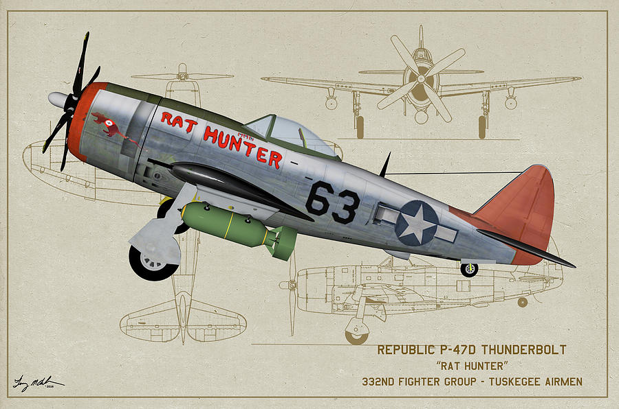 Usaaf Digital Art - Tuskegee P-47d Profile Art by Tommy Anderson