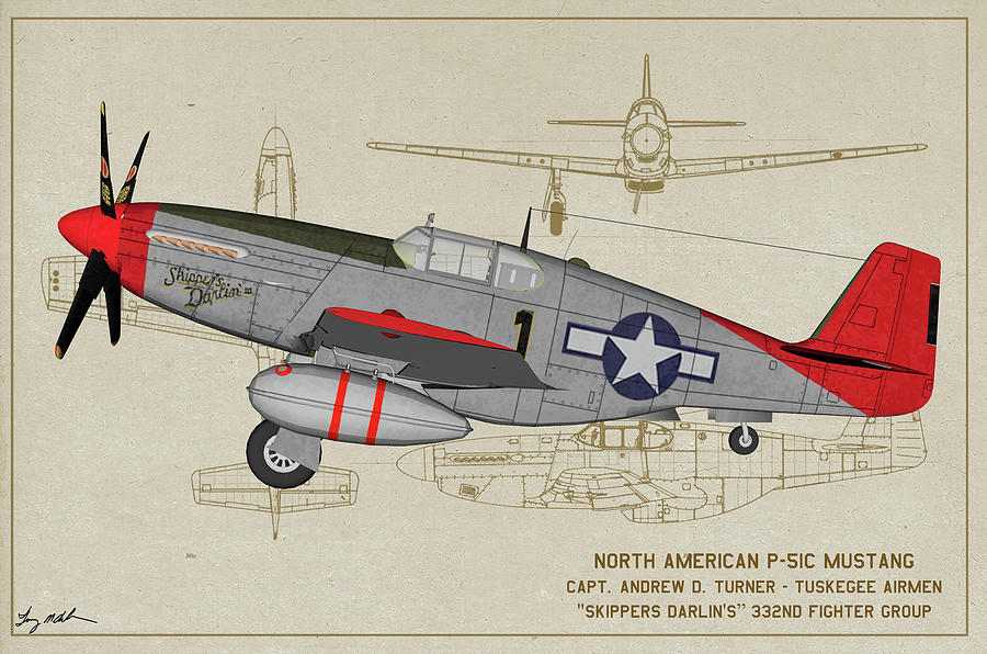 Tuskegee P-51C Skippers Darling Profile Art by Tommy Anderson