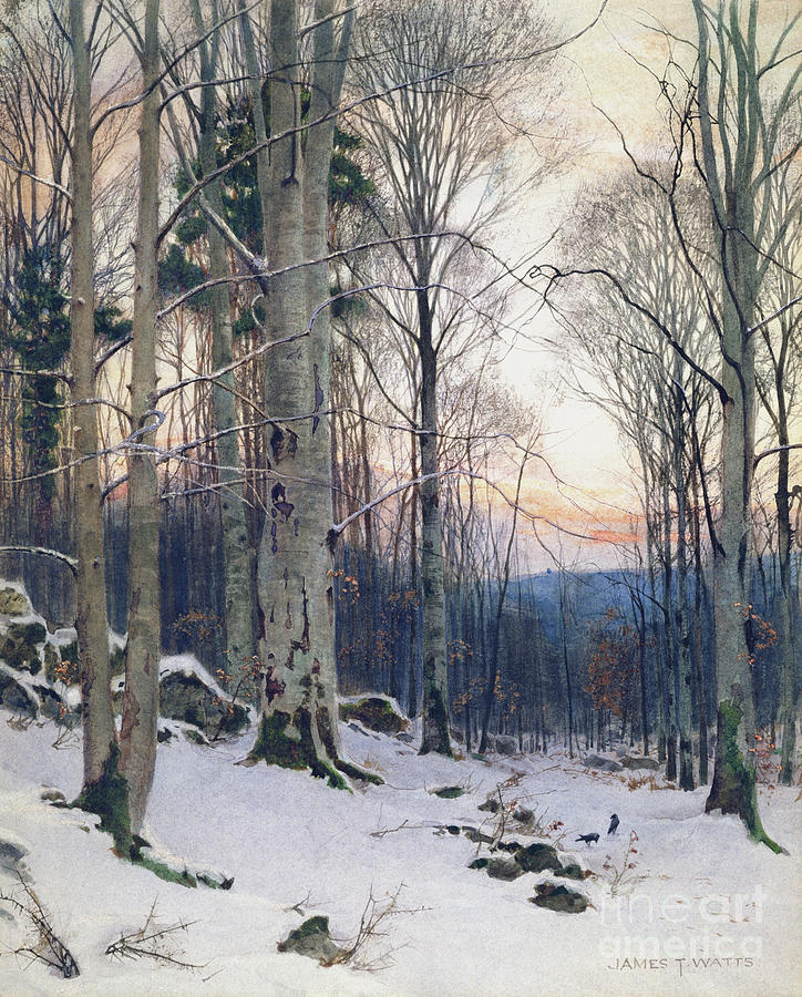 Twilight, Beech Woods by James Thomas Watts