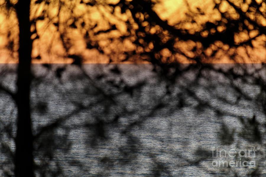 Twilight Dreams by Angelo DeVal