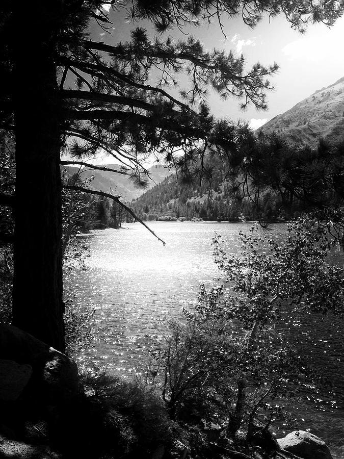 Mountain Lake Photograph - Twin Lakes, CA  by Marty Klar