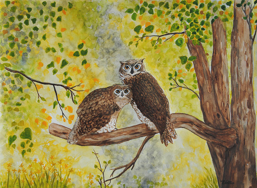 Twin Owls by Vallee Johnson