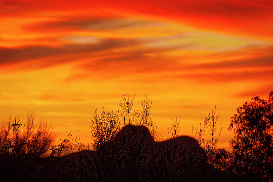 Twin Peaks Silhouette H1840 Photograph