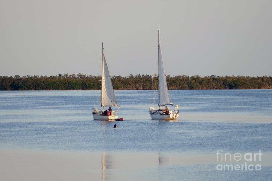Twin Sailboats by Catherine Sherman