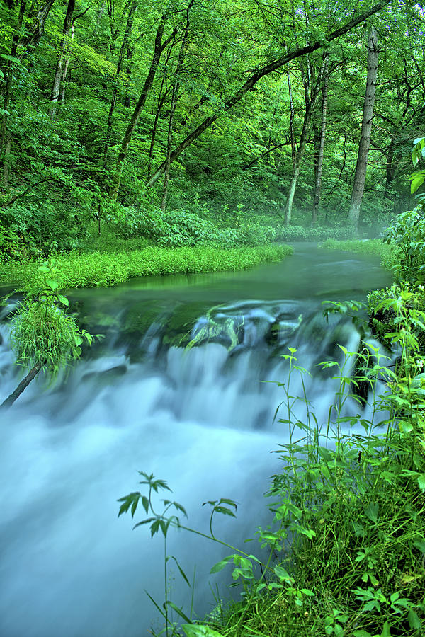 Twin Springs Mist 3 by Bonfire Photography