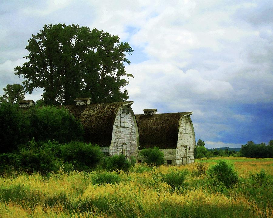 Two Barns by Timothy Bulone