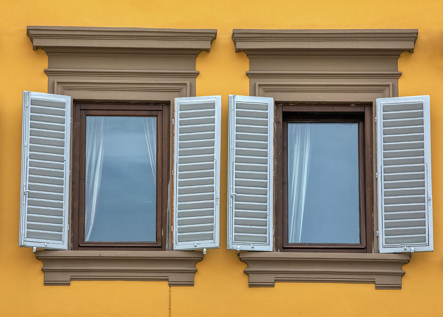 Two Blue Window Shutters of Florence by David Letts