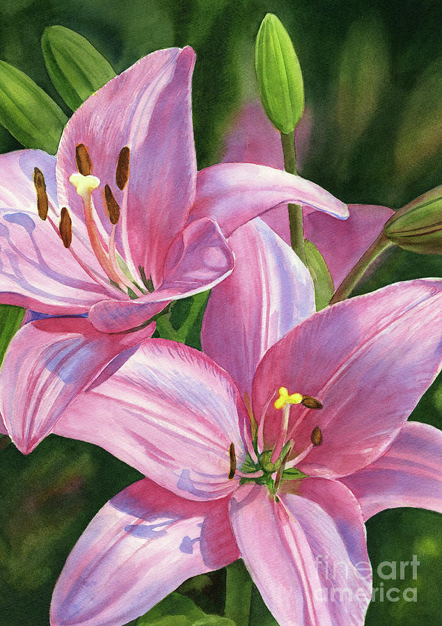 Brilliant Painting - Two Brilliant Pink Lilies with Buds by Sharon Freeman