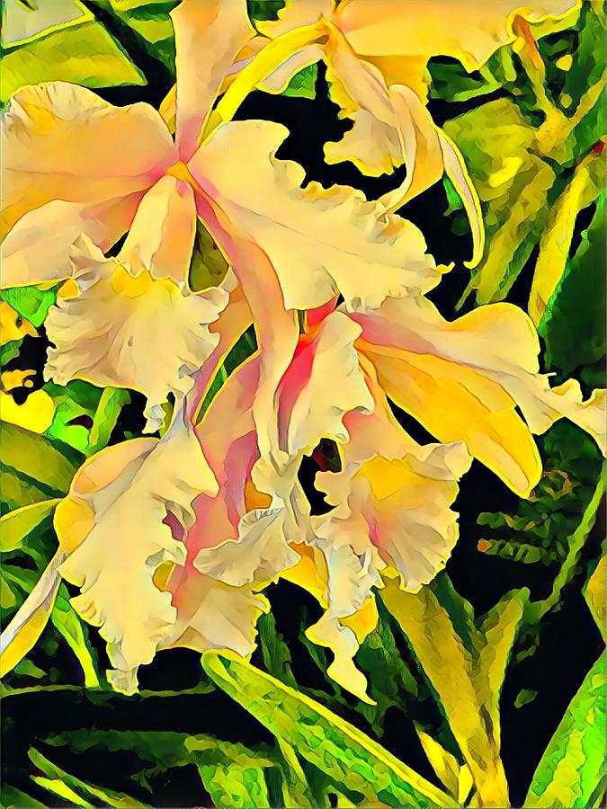 Two Cattleya Orchids Aloha by Joalene Young
