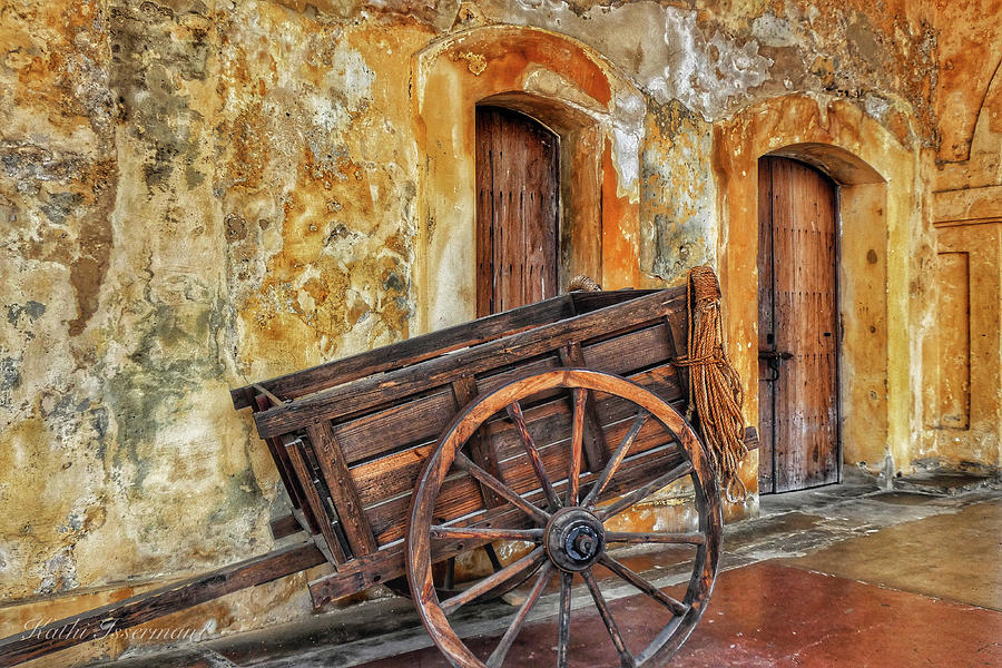 Two Doors and a Wagon 2019 by Kathi Isserman