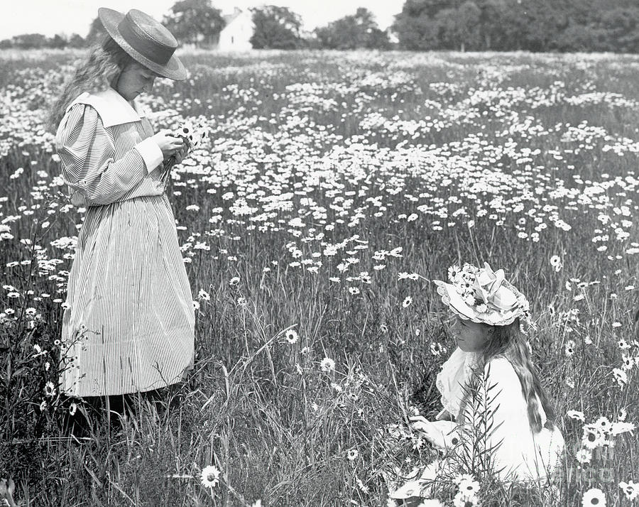 Two Girls In Field Of Daisies Photograph by Bettmann