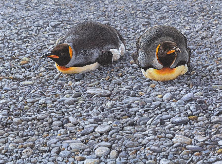 Two King Penguins by Alan M Hunt by Alan M Hunt