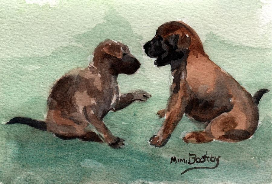 two malinois puppies by Mimi Boothby