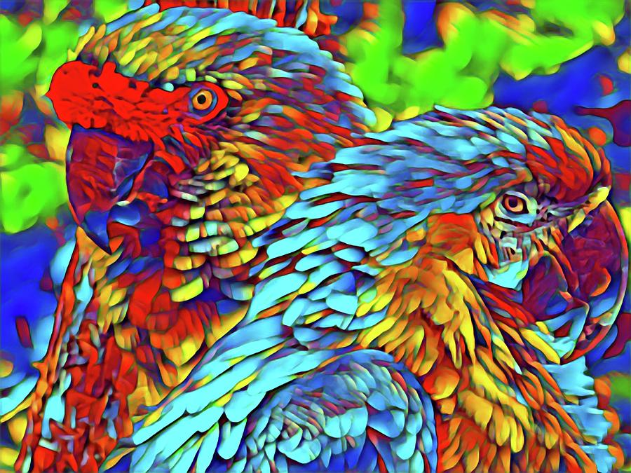 Two Parrots by Sarah Hanley