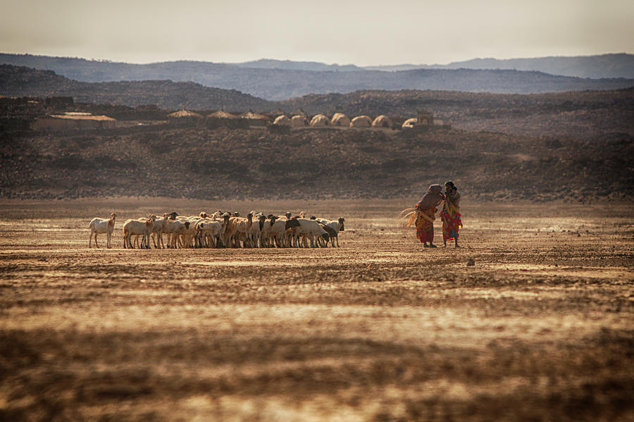 Two People With Herd Of Goats, Lac Photograph by Cultura Rm Exclusive/romona Robbins Photography