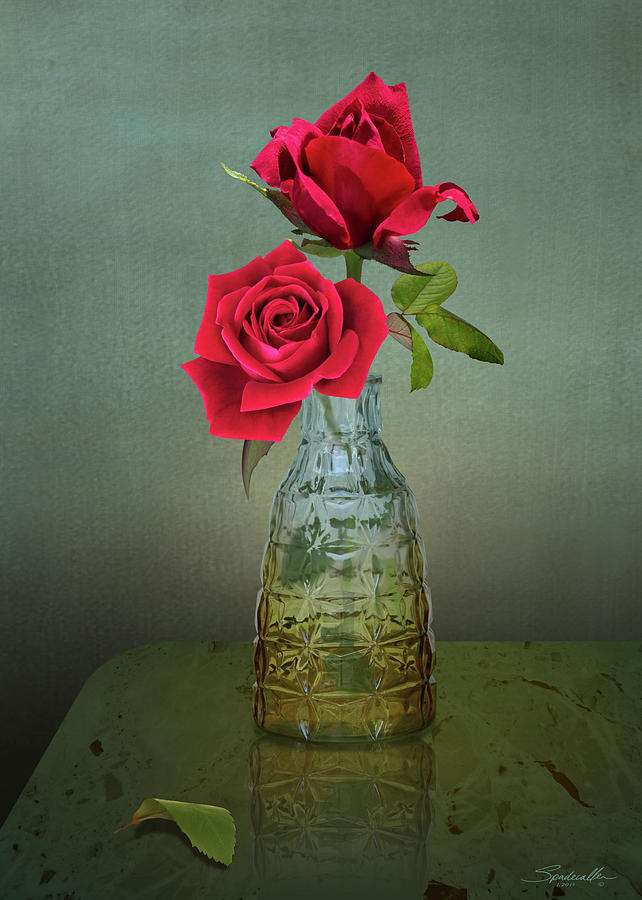 Roses Digital Art - Two Red Roses by M Spadecaller