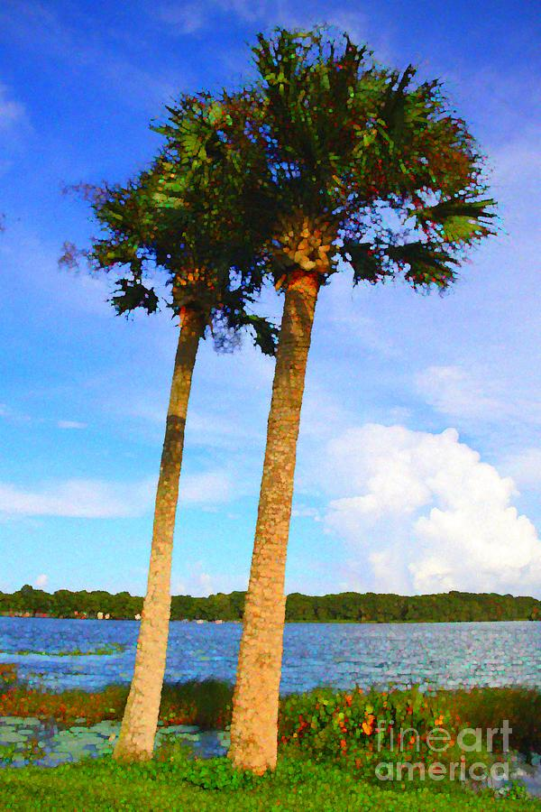 Two Sabal Palm Trees Over Looking the Waterways of Venetian Gardens by Philip and Robbie Bracco