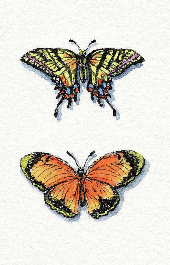 Two Tailed Swallowtail And Sleepy Yellow Sulphur by Irina Sztukowski