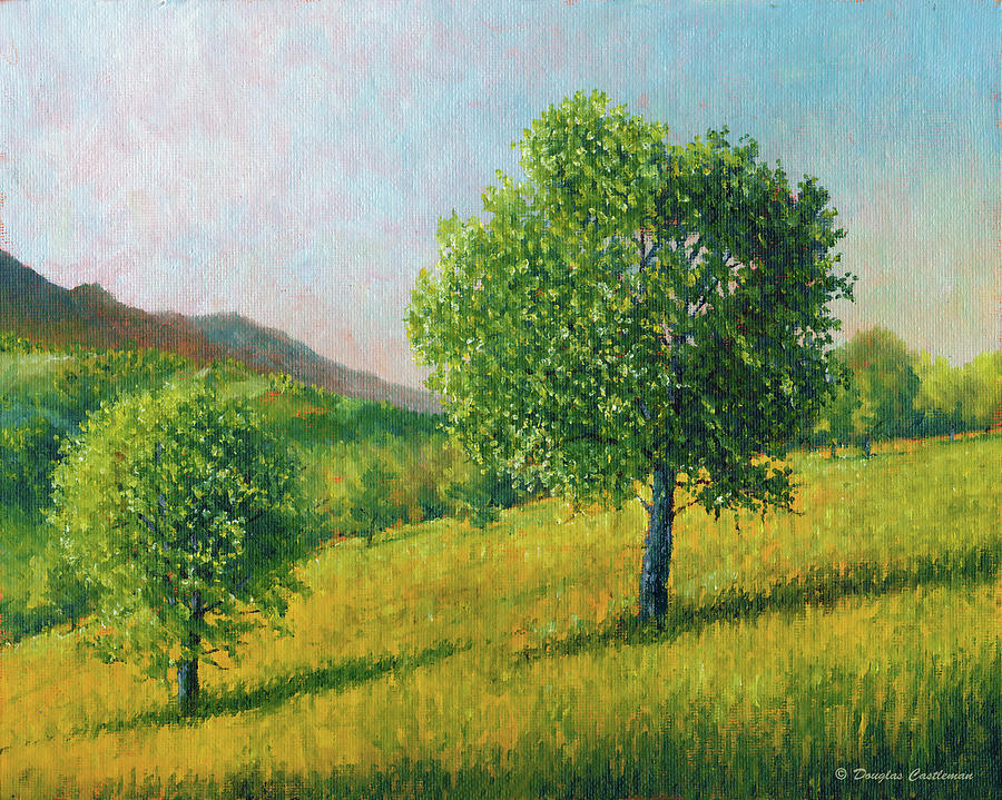 Two Trees In Tehachapi by Douglas Castleman