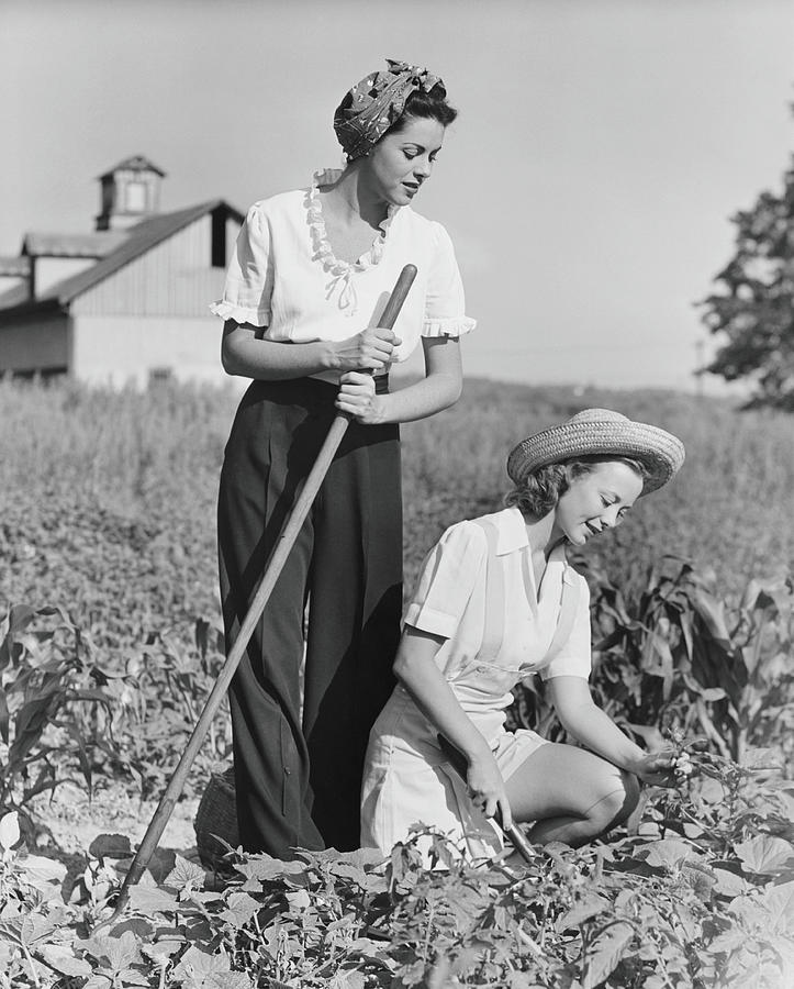 Two Women Working On Field, B&w Photograph by George Marks