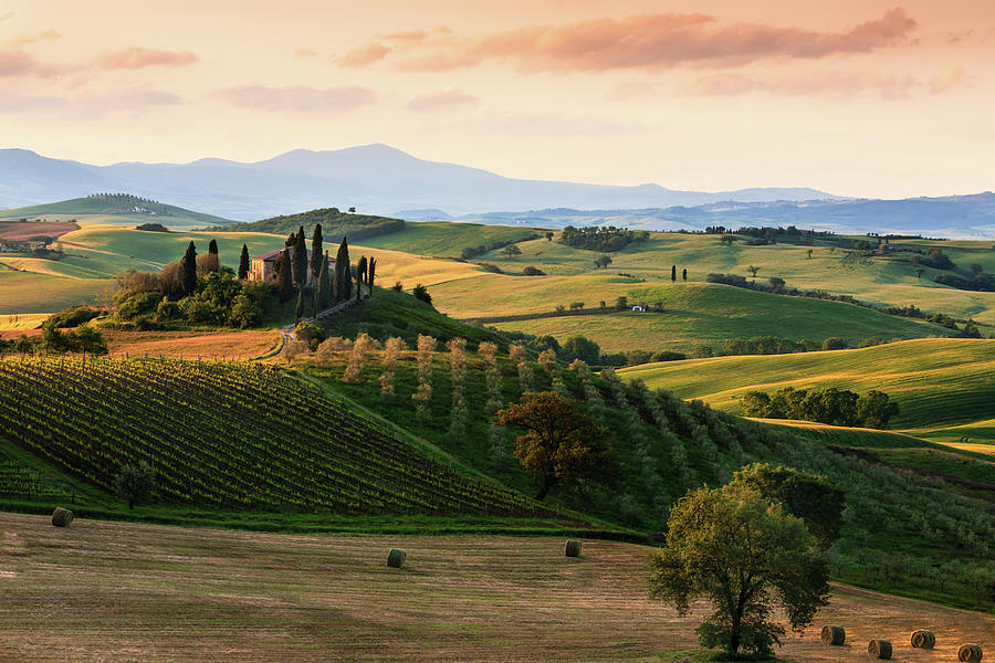 Typical Landscape In The Tuscany Photograph by Manu10319