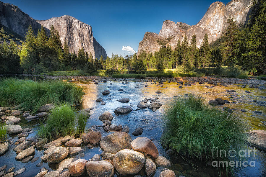 Capitan Photograph - Typical View Of The Yosemite National by Francesco Ferrarini