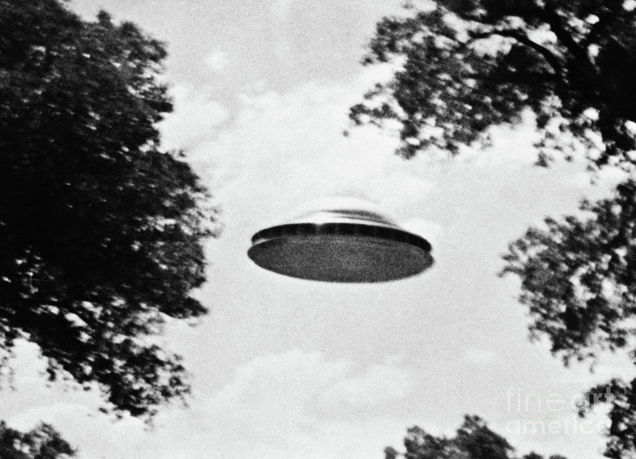 Ufo Flying Low Over Trees Photograph by Bettmann