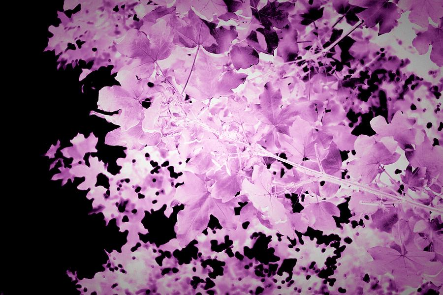 Ultraviolet Mixed Media - Purple Autumn Leaves by Itsonlythemoon -
