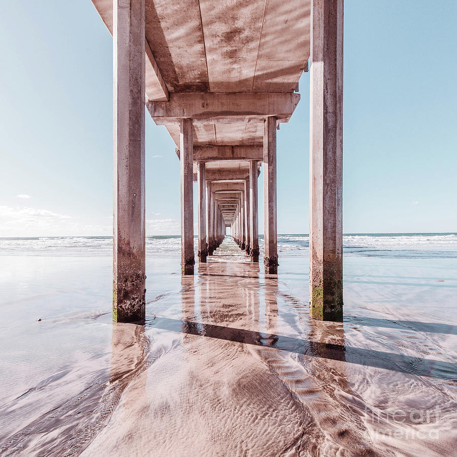 Pink Photograph - Under The Boardwalk Scripps Pier San Diego Square by Edward Fielding