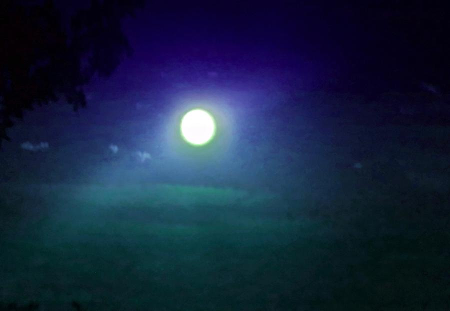 Under the Light of the Piscean Moon by Judy Kennedy