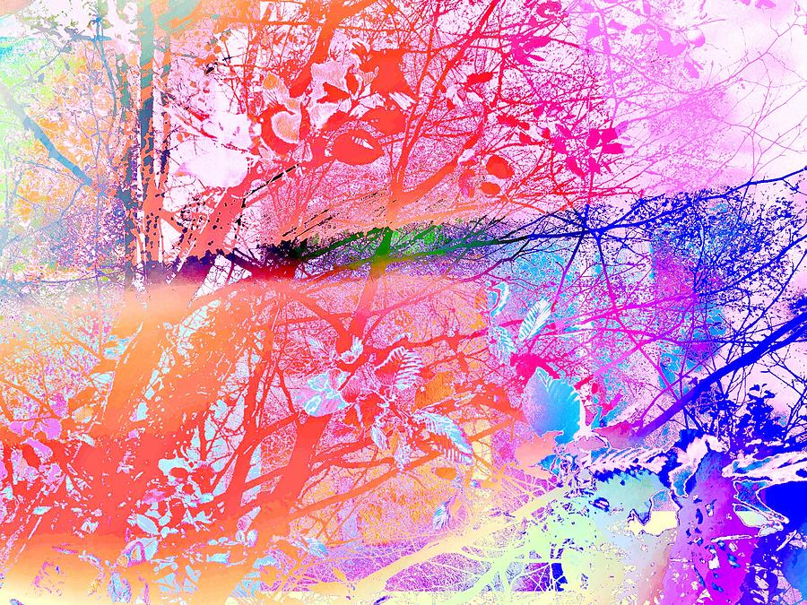 Abstract Photograph - Under the trees colourful by Itsonlythemoon -