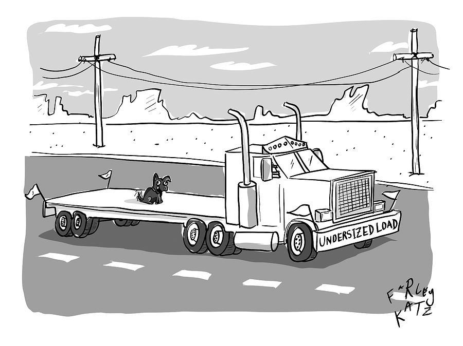 Undersized Load Drawing by Farley Katz