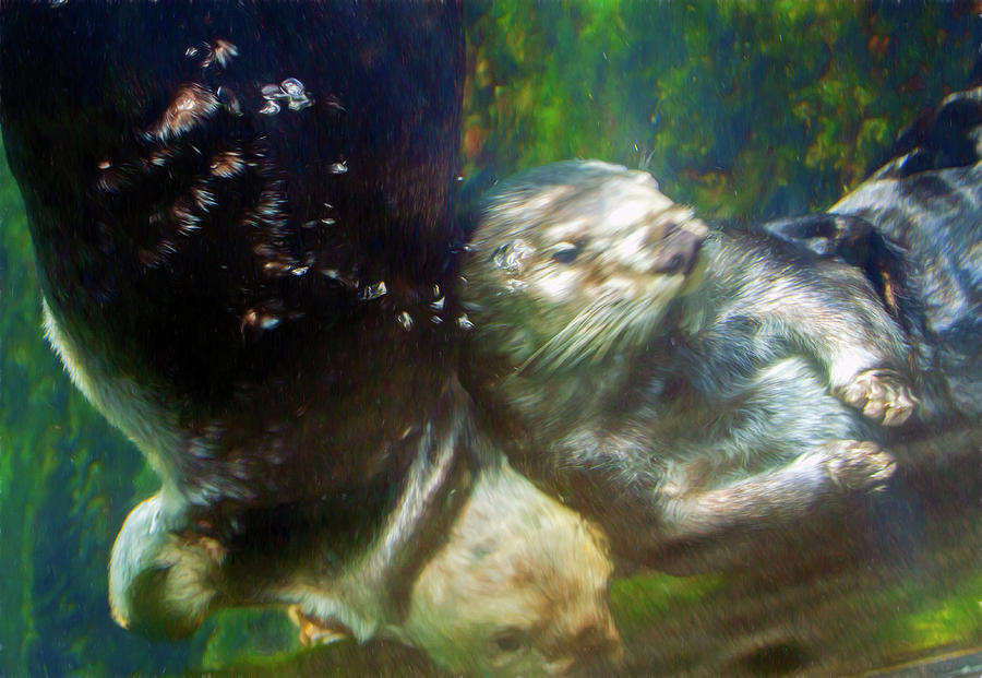Underwater Otter Bump by Bonnie Follett