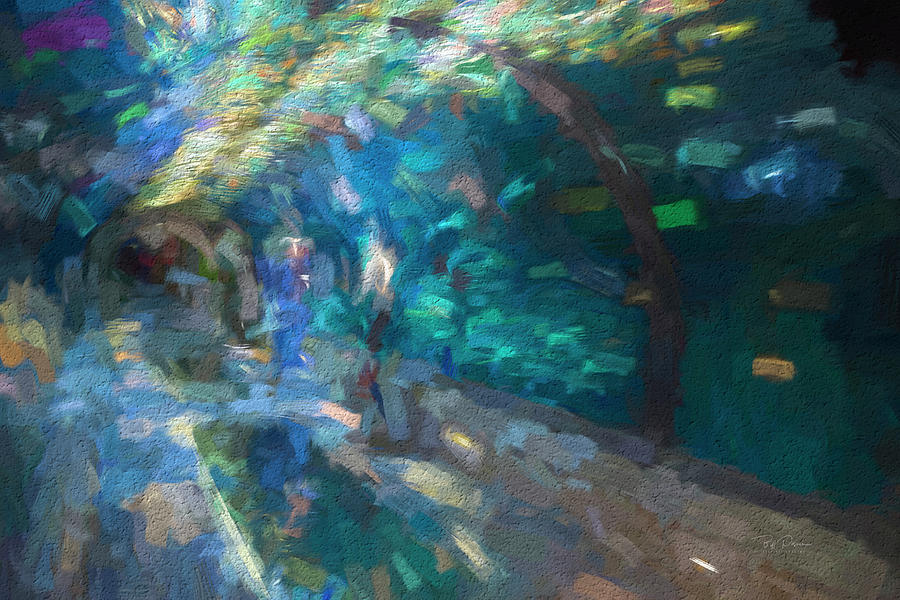 underwater tunnel Vision by Bill Posner