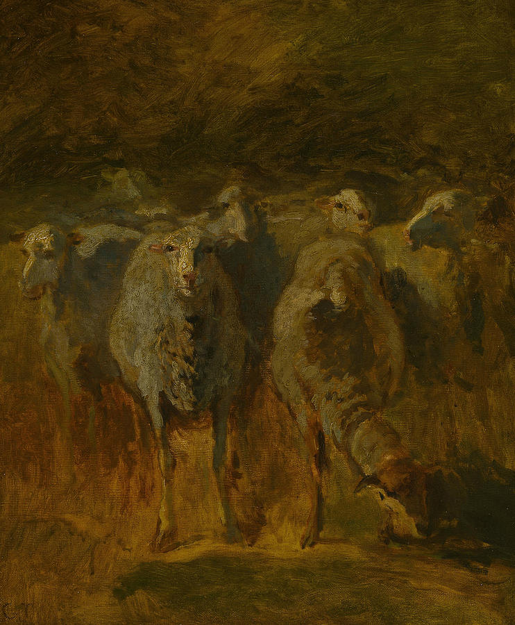 Unfinished Study of Sheep by Constant Troyon