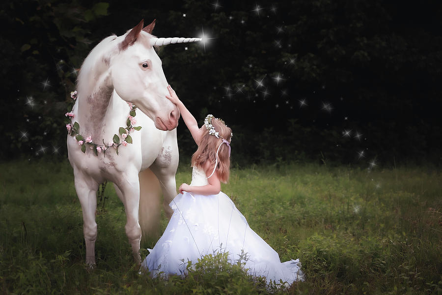 Unicorn and Princess by Anett Mindermann